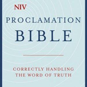 NIV Bible Zondervan Study – Marketplace Books