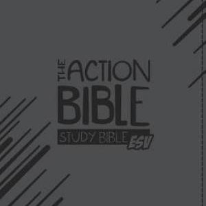NIV pocket Bible Anglicized – Marketplace Books
